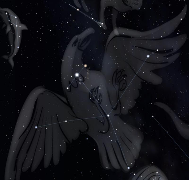 constelacion aquila