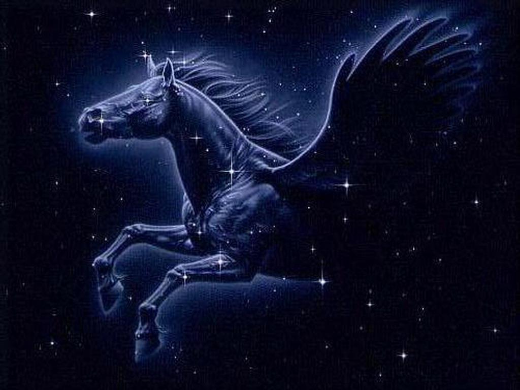 Andromina Significado pegaso | constelaciones