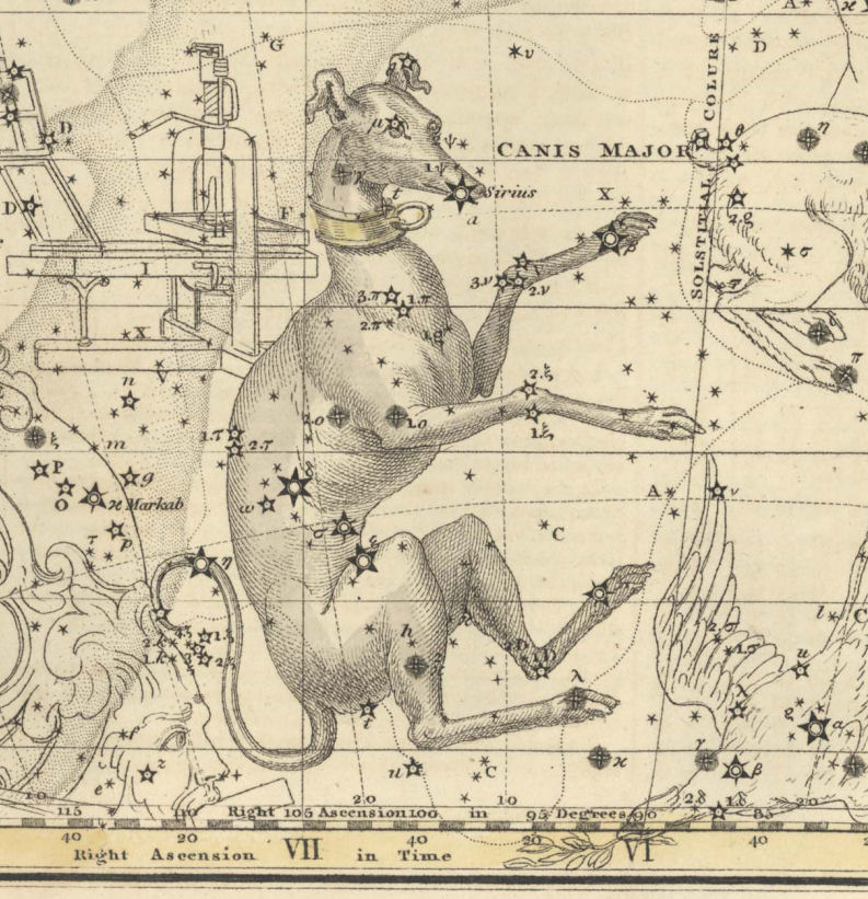 Canis major | Constelaciones